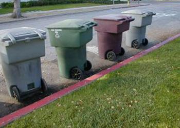 garbage2.JPG